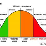 balans-stress